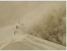 Dakar rally motobiker in sandstorm -image by dpa