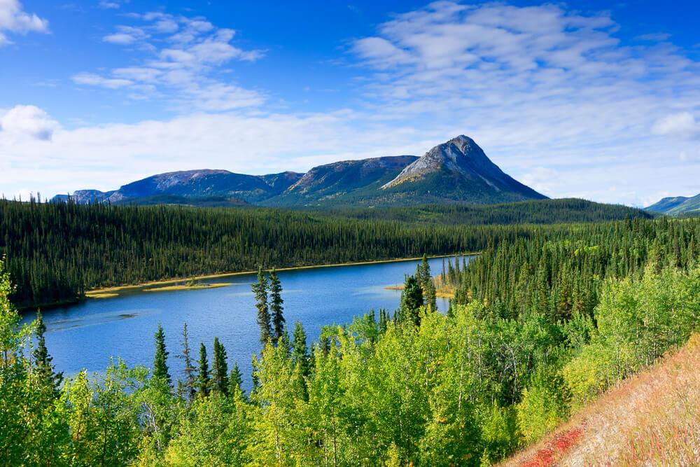 Canada landscape