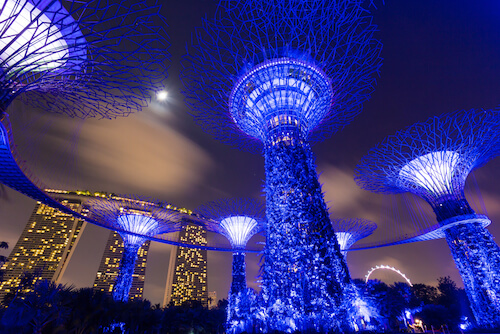 Singapore Gardens by the Bay by nights - image by Hatchapong Palurtchaivong/shutterstock.com