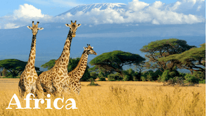 Africa Facts - Kids World Travel Guide