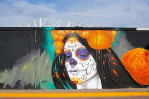 Mexico Aguascalientes Graffiti - image by Tekamex/shutterstock.com