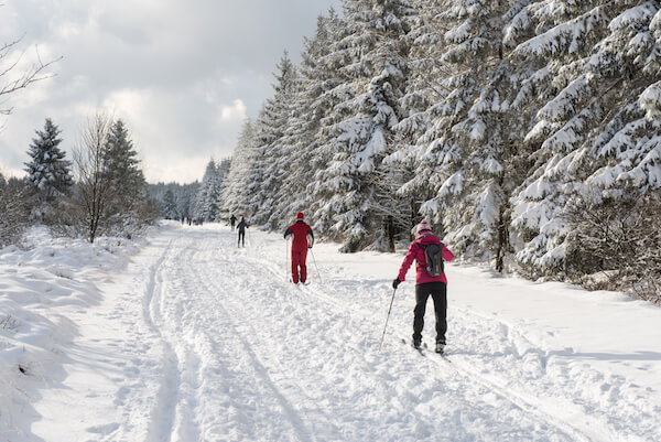 Cross country skiing in Belgium - image by Thomas Dekiere /shutterstock.com