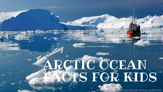 Arctic Habitat Facts For Kids
