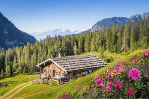 Austria alm living