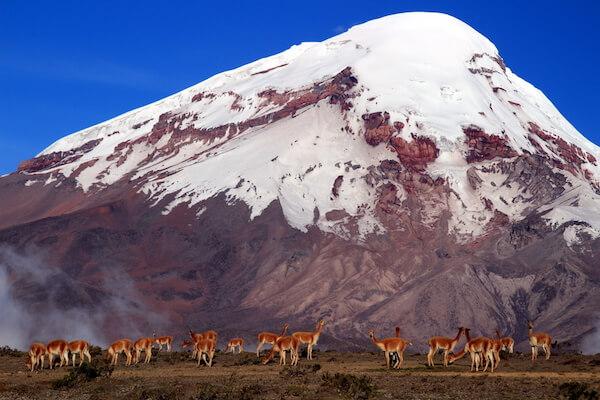 Chimborazo - Ecuador's highest mountain - image by EmilianoBarbieri/shutterstock.com