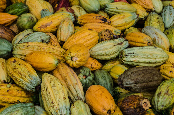 Cocoa beans - Ghana is one of the leading cocoa producers