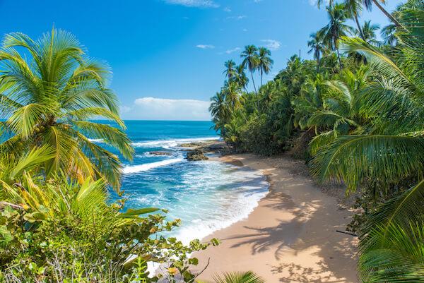 Costa Rica's Manzanillo beach