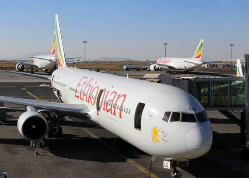 Ethiopian airlines plane by Fedor Sidorov Shutterstock.com