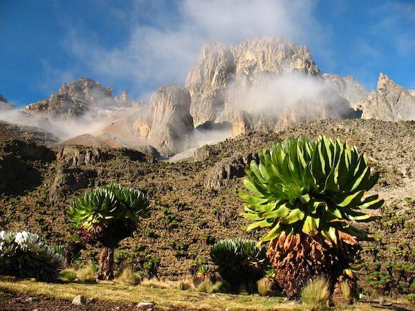Mount Kenya - image by David Patek