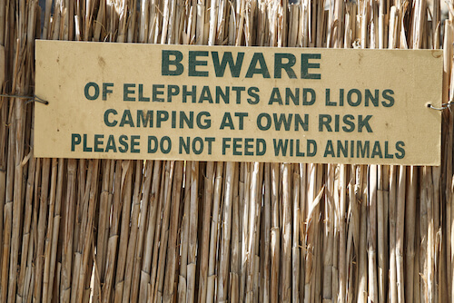 Namibia_wildlife_campsign_by_MichelPiccaya_Shutterstock