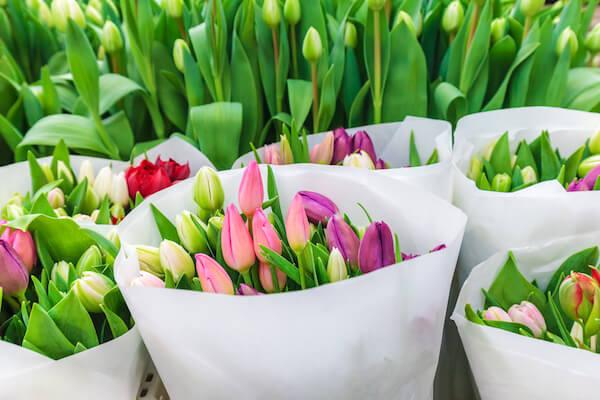 Tulip flower bouquets