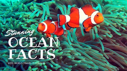 Ocean Facts - Kids World Travel Guide