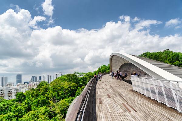 Singapore Attraction: Henderson Waves Bridge