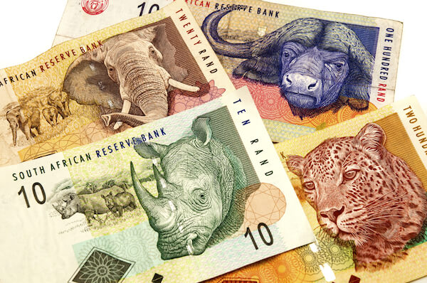 South African banknotes depict the Big Five