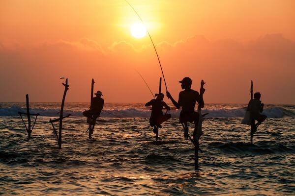 Fishermen on Stilts in Sri Lanka at Sunrise