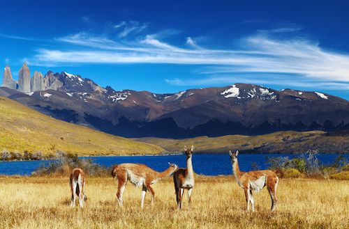 South America Facts For Kids Geography Attractions