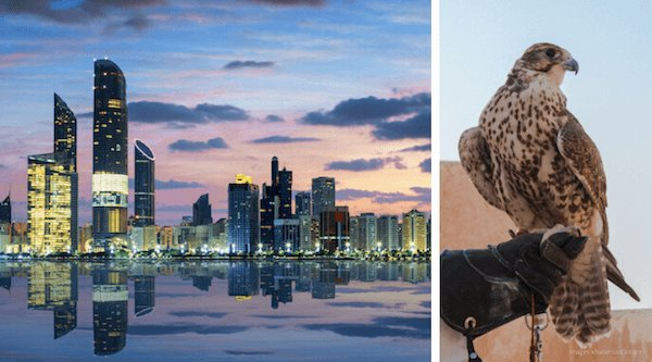 UAE Facts Header: Abu Dhabi is the capital city and falconry is a popular sports in the UAE - images by Shutterstock.com