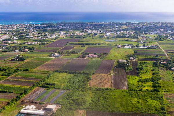 Barbados aerial view - image by Anton Ivanov