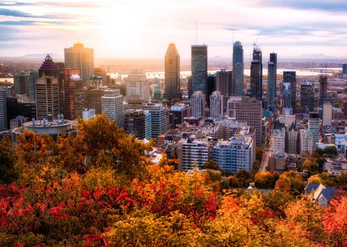 Montreal in autumn with colourful leaves at sunrise - image by shutterstock.com