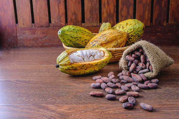 Cocoa pod with cocoa beans