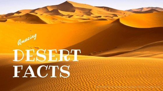 Desert Facts - Kids World Travel Guide