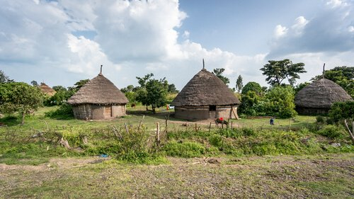 Ethiopian huts in Omo valley - image by Canyalcin/shutterstock.com