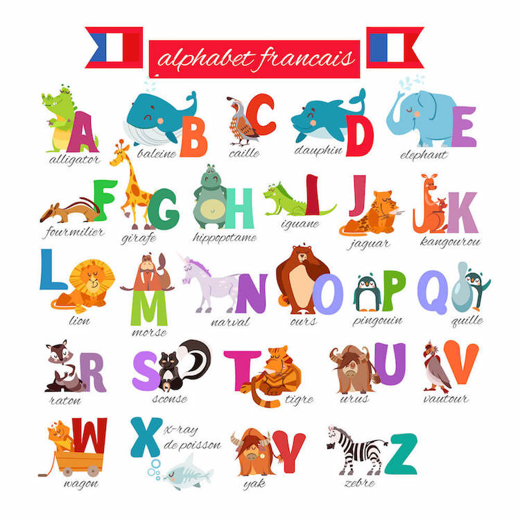 French alphabet with animals