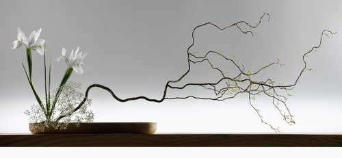 ikebana - Japanese art of flower arranging