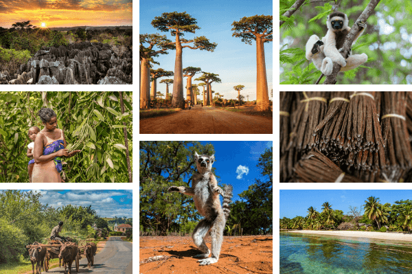 Madagascar country portait - images by shutter stock.com