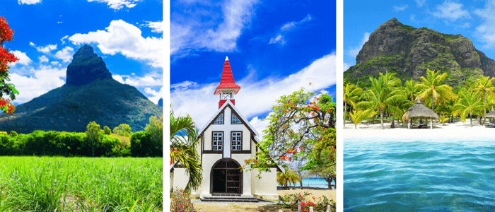 Căutare gratuită de companii din Mauritius