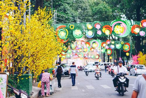 Vietnam Tet flowers in Ho Chi Minh City - image by Joel Whalton/Shutterstock.com